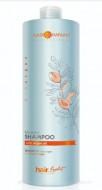 Шампунь с био маслом Арганы Hair Company HAIR LIGHT BIO ARGAN Shampoo 1000мл: фото