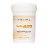 Крем увлажняющий для сухой кожи CHRISTINA Elastin Collagen Carrot Oil Moisture Cream with Vit. A, E & HA 250 мл: фото